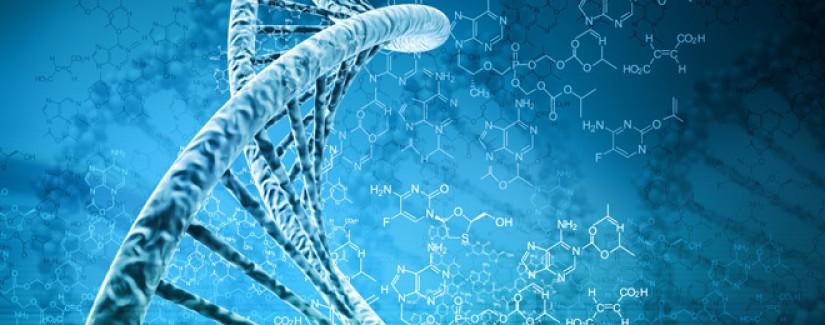 O ADN de Deus