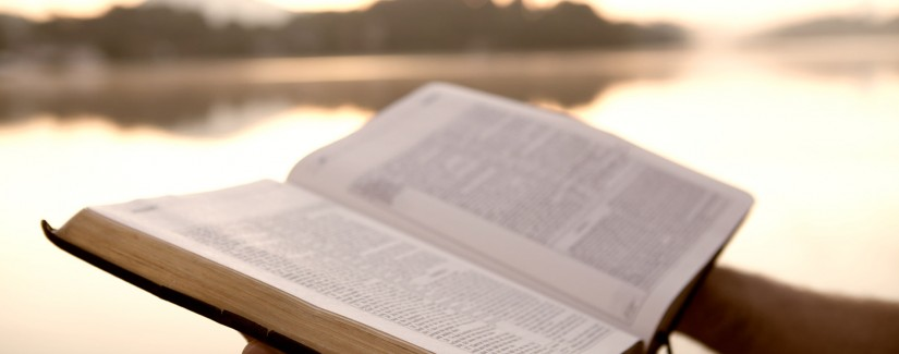 111 – 45º Dia | Ser O Testemunho