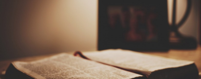 43º Dia | Ser O Testemunho