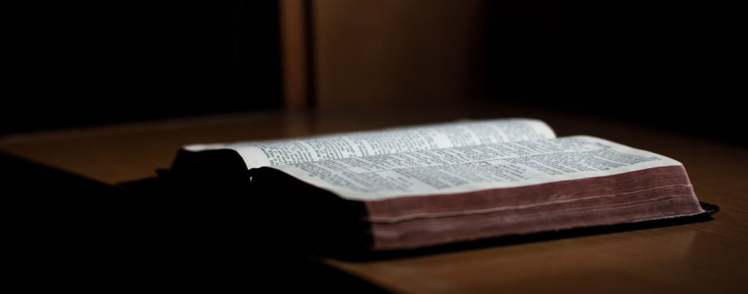 104 – 38º Dia | Ser O Testemunho