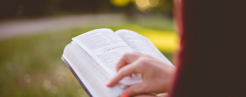 155 – 89º Dia | Ser O Testemunho
