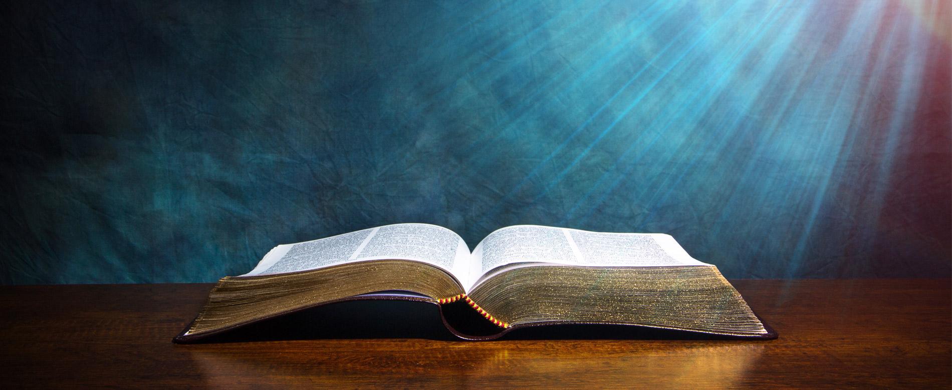 12º Dia | Ser O Testemunho