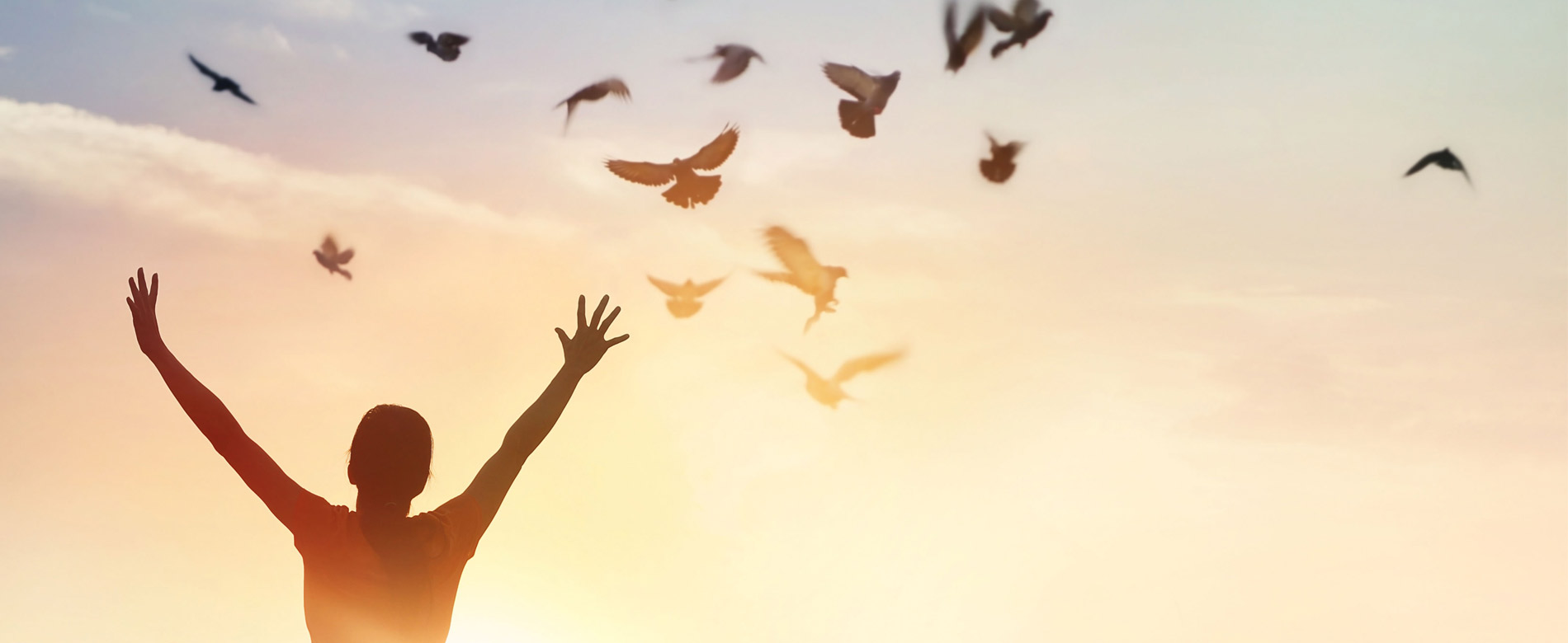 179 – Como ter paz?