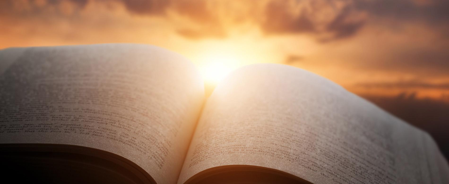 21º Dia | A quem Deus escolhe?