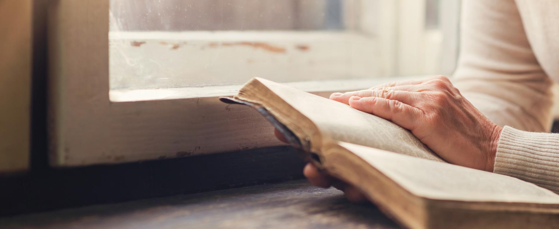 19º Dia | Como Deus age diante de uma decepção?